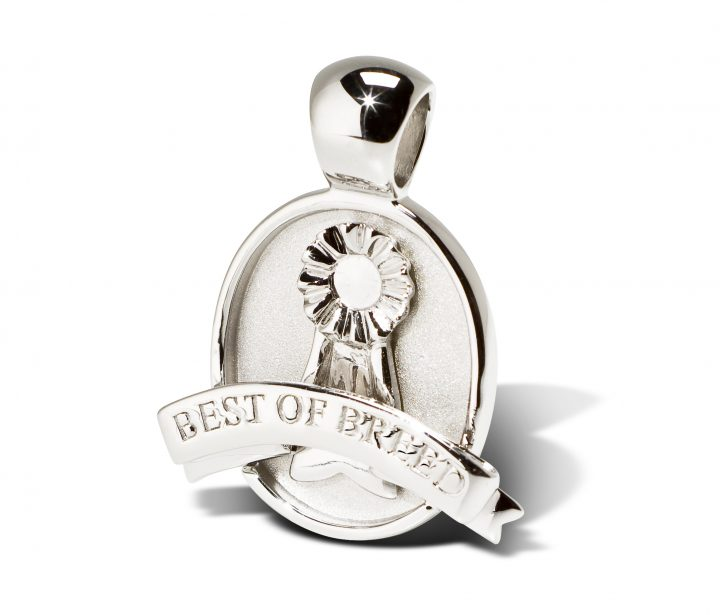 4-best-of-breed-medallion