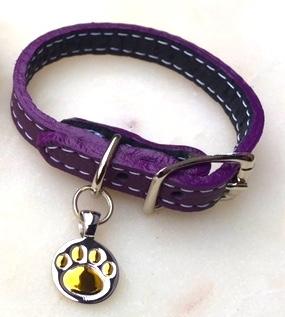 purple-paw-brclt